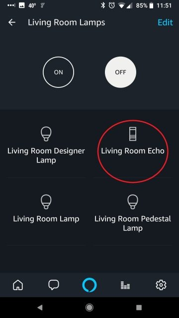 Echo Device in Light Group