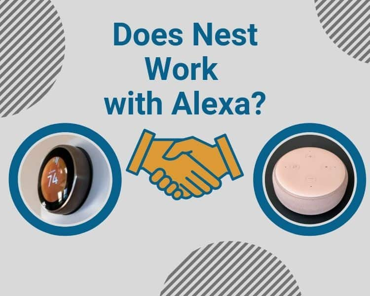 Does Nest Work with Alexa?