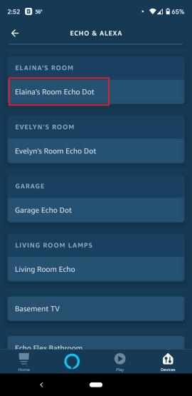Alexa Device List
