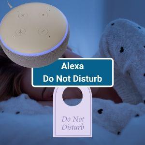 Alexa Do Not Disturb