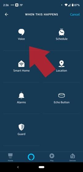 Select Alexa Voice Trigger